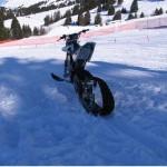 quantya-snowx